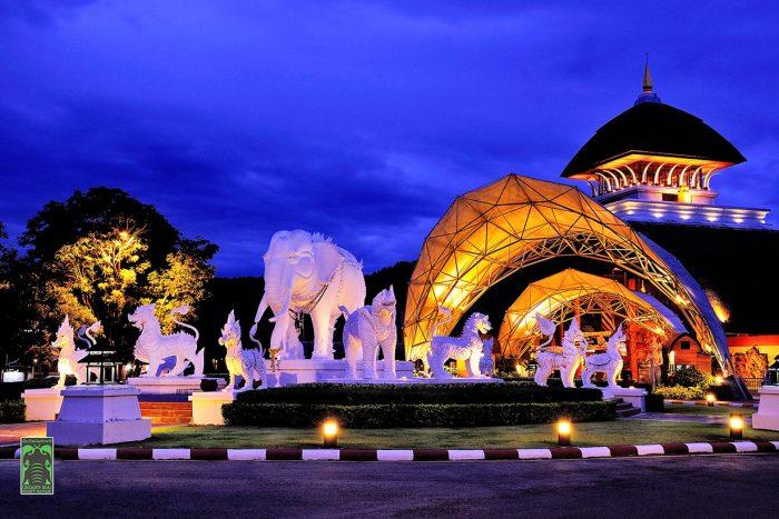 Công viên Night Safari - Tất tần tật kinh nghiệm du lịch Chiang Mai Thái Lan