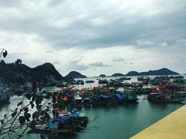 8 địa điểm ở đảo Cát Bà - Top điểm đến Cát Bà Ảnh: instagram