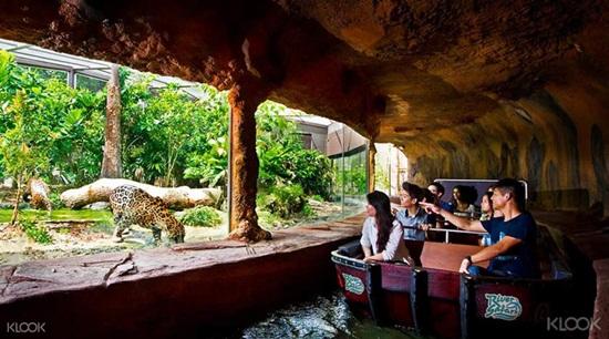Công viên hoang dã lớn nhất thế giới River Safari Singapore