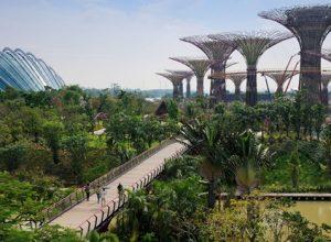 4 điểm tham quan du lịch hàng đầu tại Singapore