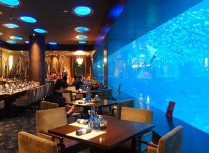 thưởng thức bữa tối tại nhà hàng Đại Dương
