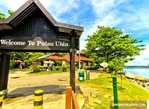 Trải nghiệm cuộc sống làng quên trên đảo Pulan Ubin Singapore