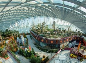 Gardens by the Bay kỳ quan nhân tạo của Singapore