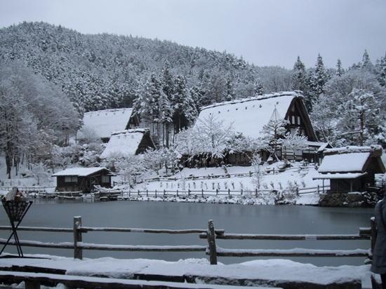 Trải nghiệm du lịch Nhật Bản mùa đông sắc màu ngày hội