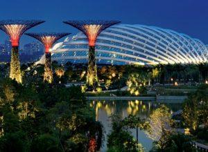 Garden by the bay - thành phố trong vườn đẹp nhất Singapore