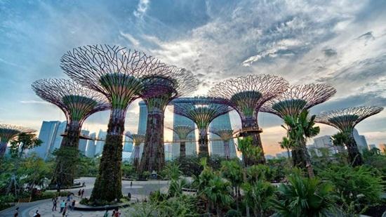 Garden by the Bay một công trình kiến trúc độc đáo ở Singapore