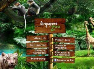 """Sở Thú Singapore với hình thức """"Mở"""" nổi tiếng thế giới"""