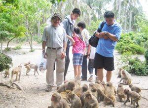 Hành trình thăm quan vịnh la hạ và đảo khỉ