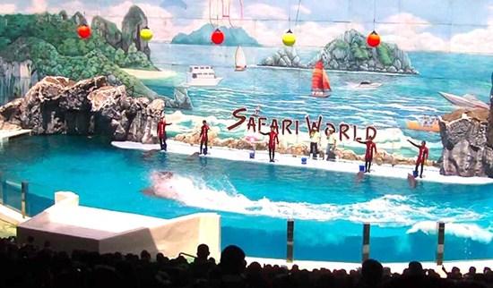 Thăm quan Siam Ocean World và safari world ở Bangkok Thái Lan