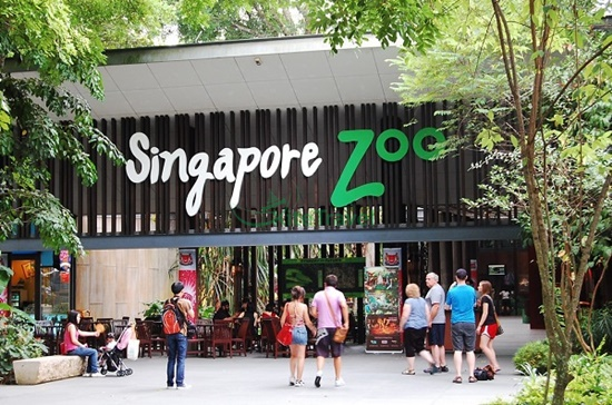Singapore zoo ở đâu