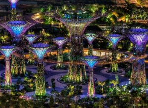 Garden by the Bay ở singapore