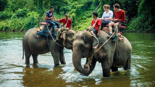 Vé Pattaya Elephant Village