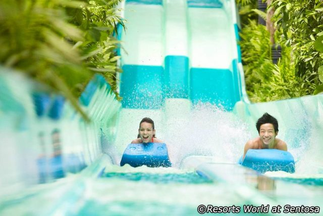 Vé adventure cove waterpark singapore