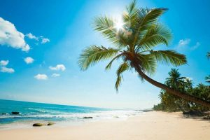 Thăm Quan Nam Đảo Phú Quốc