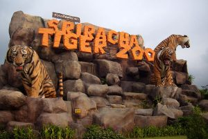 9-sriracha-tiger-zoo-with-lunch-pattaya-tour-3