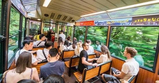 Combo vé xe điện Peak Tram