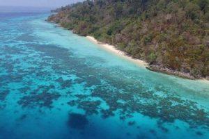 Tour Đảo Koh Rok & Koh Haa (Một Ngày)