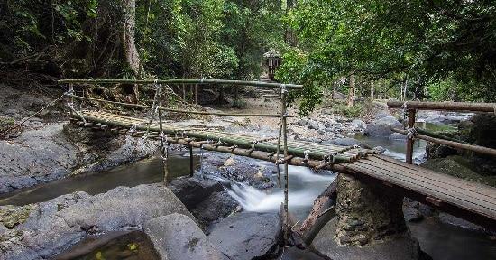 Tour Pala U Kaeng Krachan 1 ngày