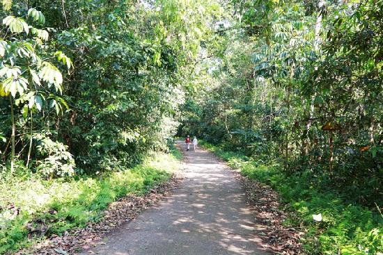 Tour du lịch Hang Múa - Tam Cốc - Cúc Phương