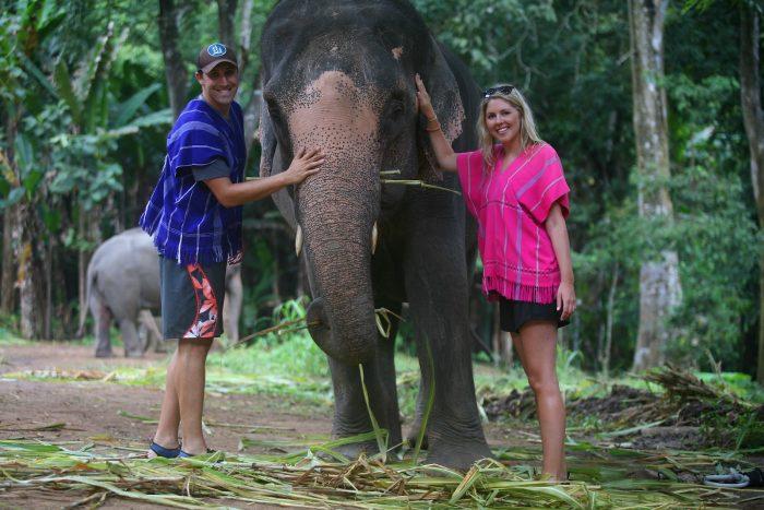 Cho voi ăn - Tất tần tật kinh nghiệm du lịch Chiang Mai Thái Lan