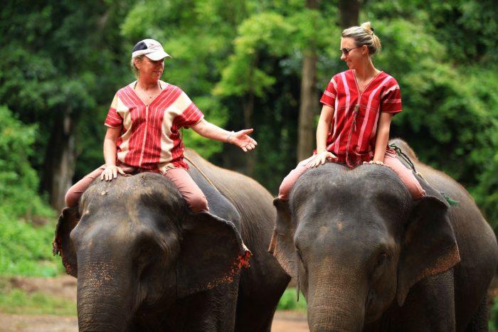 Cưỡi voi - Tất tần tật kinh nghiệm du lịch Chiang Mai Thái Lan