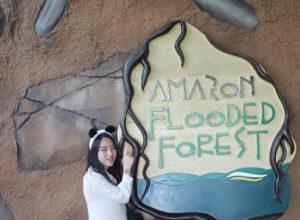 Kinh nghiệm đi sở thú Singapore Zoo