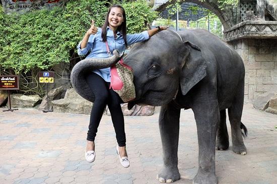 Kinh nghiệm tham quan Safari World Bangkok Thái Lan
