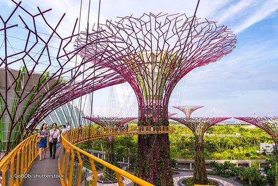 Tham quan 18 siêu cây thẳng đứng ở Garden by the bay Singapore