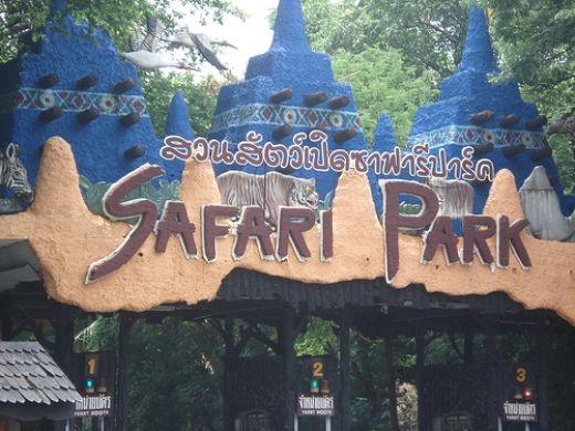 Cách mua vé và những lưu ý khi tham quan vườn thú Safari World Bangkok