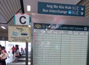 Cách tự đi vườn thú Singapore Zoo bằng xe bus Mandai Express