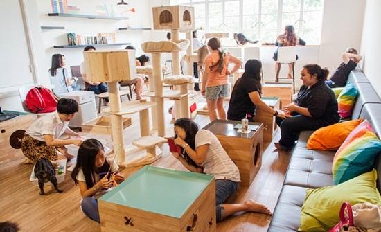 Các hoạt động vui chơi cùng bé tại Singapore