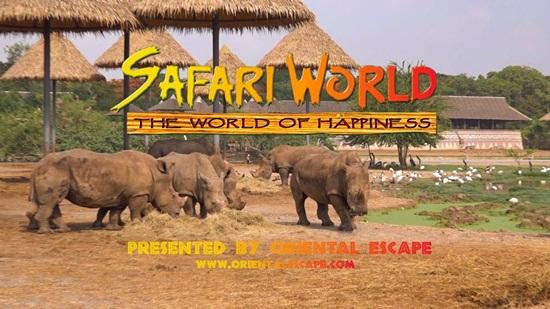 Safari world bangkok điểm tham quan hấp dẫn khi đến Thái Lan