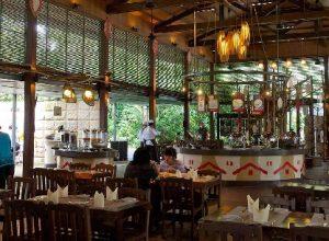Đi singapore zoo bằng MRT và phương tiện công công khác