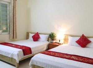 35 khách sạn nhà nghỉ tại cát bà giá rẻ