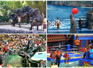 Cách đi công viên safari world bangkok Thái Lan