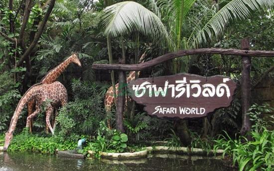 vườn thú safari bangkok thailand