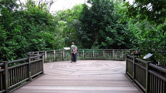 tham quan Singapore Zoo