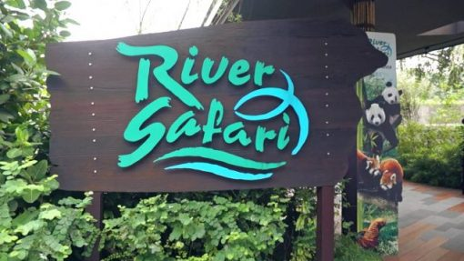 Vé River Safari Singapore