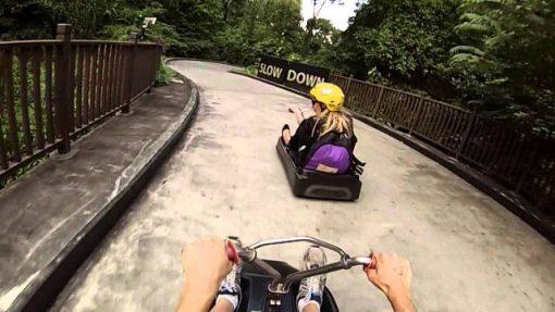 Vé Sky Line Luge Singapore