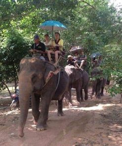 Vé Pattaya Elephant Village