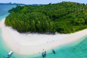 bamboo island