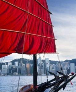 Chuyến Vòng Quanh Cảng Trên Thuyền AquaLuna Vào Ban Ngày
