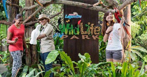 Vé công viên nước Sunway Lagoon